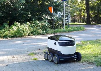 Food delivery robot waiting on driveway